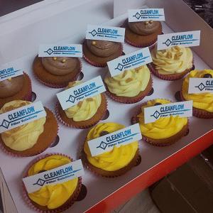 Corporate cupcake's met bedrijfslogo