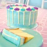 vanilla drip taart bestellen, watercolor cake, taart bestellen denhaag, cake order wassennaar