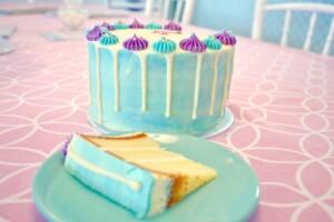vanilla drip taart bestellen den haag